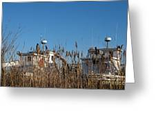 Oyster Boats In Dry Dock  Greeting Card