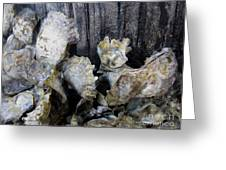 Oysters On Piling Greeting Card