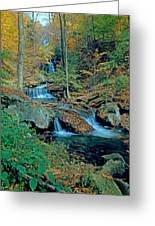 Ozone Falls And Rapids Greeting Card