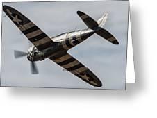P47 Thunderbolt Snafu #4 Greeting Card