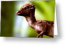Pachyosaurus Dinosaur Greeting Card