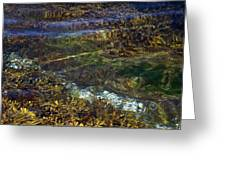 Pacific Calm 3 Greeting Card