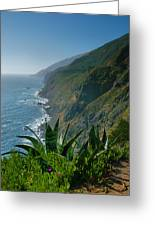 Pacific Coast Shoreline IIi Greeting Card by Steven Ainsworth