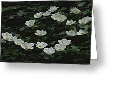 Pacific Dogwood Blossoms Greeting Card