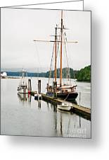 Pacific Grace Greeting Card