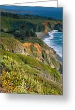 Pacific Shoreline Vii Greeting Card