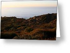 Pacific Vista Greeting Card