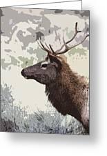 Painted Bull Elk Greeting Card