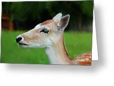 Painted Deer Greeting Card