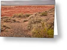 Painted Desert 3 Greeting Card