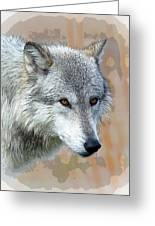 Painted Grey Wolf Greeting Card