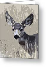 Painted Muley Greeting Card