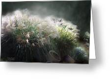 Painted Pampas Greeting Card