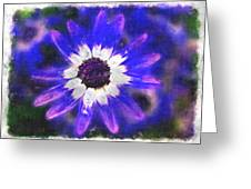 Painted Purple  Greeting Card