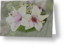 Painted Weigela Window Greeting Card