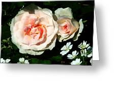 Pale Pink Roses In Garden Greeting Card