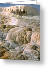 Palette Spring In Mammoth Hot Springs Greeting Card