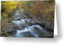 Palisades Autumn Greeting Card