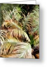 Palm Bank Greeting Card