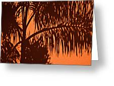 Palm Frond Abstract Greeting Card