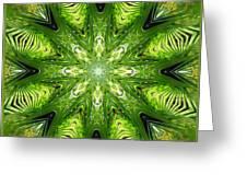 Palm Kaleidoscope 11 Greeting Card