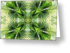 Palm Kaleidoscope 6 Greeting Card