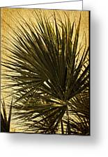 Palm Leaves 2 Greeting Card