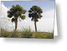 Palm Sea Oat Hill  Greeting Card