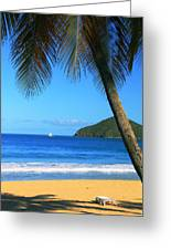 Palm Shaded Island Beach  Greeting Card