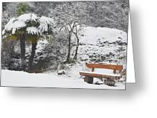 Palm Tree And A Bench With Snow Greeting Card