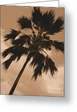 Palm Tree Leeward Oahu Greeting Card