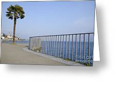 Palm Tree On The Lakefront Greeting Card