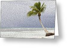 Palm Tree On The Tropical Beach Greeting Card