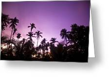 Palm Trees At Dusk, Malaysia, Southeast Greeting Card