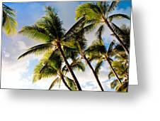 Palm Trees At Twilight Greeting Card