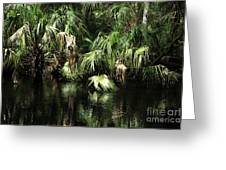 Palmettoes In The River Greeting Card