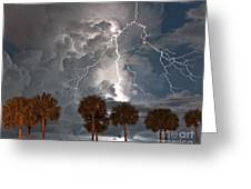 Palms And Lightning  Greeting Card