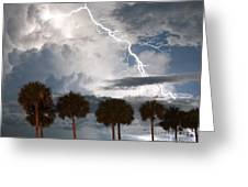 Palms And Lightning 3 Greeting Card