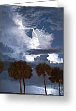 Palms And Lightning 4 Greeting Card