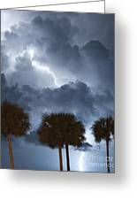 Palms And Lightning 5 Greeting Card