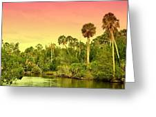 Palms In Twilight Greeting Card