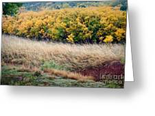 Palo Duro Fall Snow Greeting Card