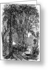Panama Railway, 1875 Greeting Card