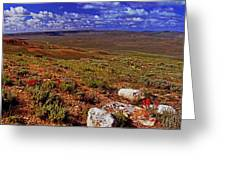 Panoramic View Of Fossil Butte Nm Valley Greeting Card