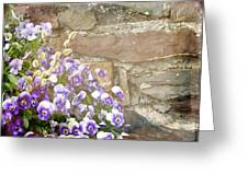 Pansies And Pussywillows Greeting Card