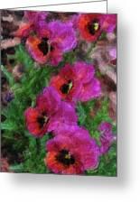 Pansies Painting Greeting Card