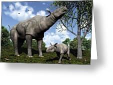 Paraceratherium, Artwork Greeting Card