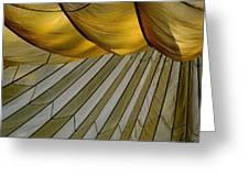 Parachute Shade Greeting Card