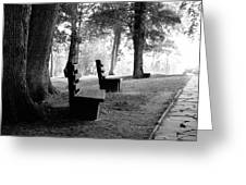 Park Bench In Black And White Greeting Card