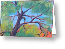 Park Trees 9 Greeting Card